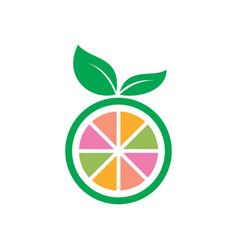 circle fruit leaf icon logo vector image vector image