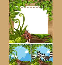 background scenes with raccoons and paper vector image