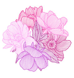 background with linear peonies beautiful vector image