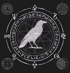 Banner with hand-drawn raven and sorcery runes vector