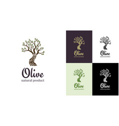 elegant olive tree isolated icon tree logo vector image