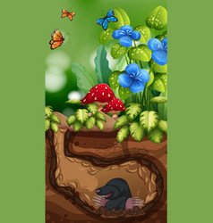 Nature scene with mole and butterfly vector