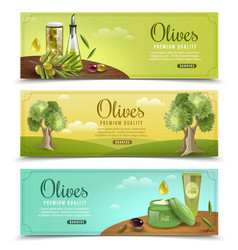 olive banners set vector image
