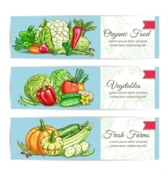 Organic vegetables vegetarian banners set vector image