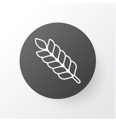 Plant icon symbol premium quality isolated wheat vector
