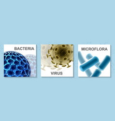realistic microbiology colorful cards set vector image