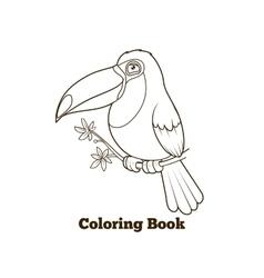 Toucan bird cartoon coloring book vector