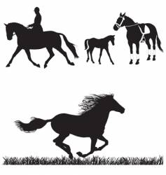 horse collection vector image