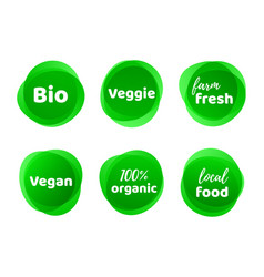 bio veggie farm vegan organic food label vector image