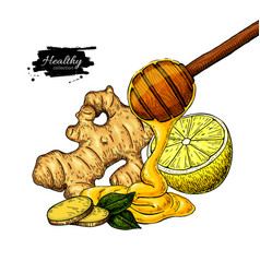 Honey ginger and lemon drawing wooden vector