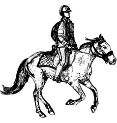 horse riding sketch drawing vector image