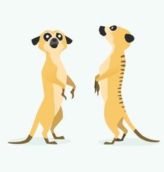 Meerkat cartoon vector