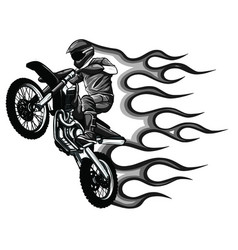 motocross on white background vector image