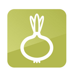 Onion outline icon vegetable vector