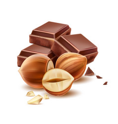 realistic chocolate piece with 3d hazelnut vector image
