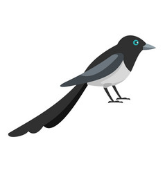 Small magpie icon flat style vector