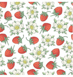 Strawberry collestion 2-02 vector