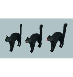 Isometric Black Cat Set calm cat meowing vector image