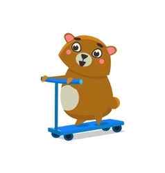 Brown Bear On Scooter vector image vector image