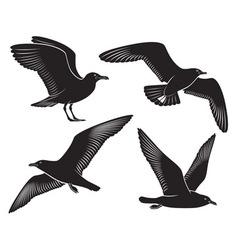 bird seagull vector image vector image