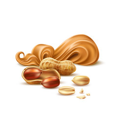 realistic peanut butter with shell and nuts vector image