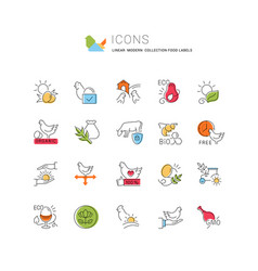 Set line icons food labels vector