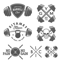 Set of vintage gym emblems and design elements vector image