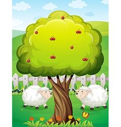 Sheeps inside the fence near the apple tree vector