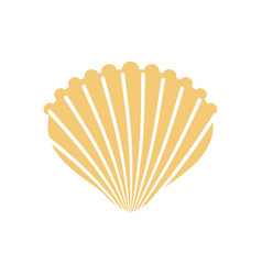 Shell isolated conch in white background vector