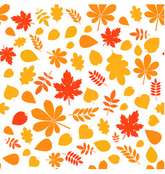 colored autumn pattern vector image vector image