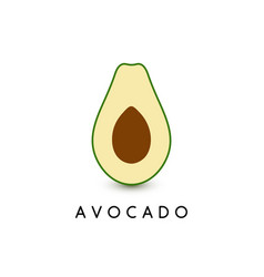 avocado 3d template vector image