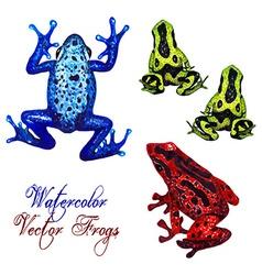 Frog set vector