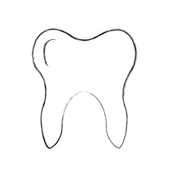 human tooth isolated icon vector image