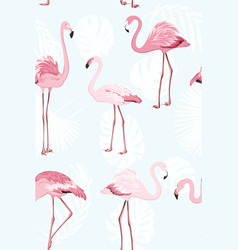 pink flamingo beautiful exotic birds jungle palm vector image