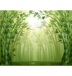 Bamboo trees inside the forest vector