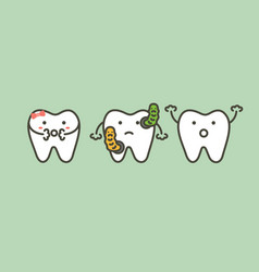 Bacteria in teeth causes decay tooth or caries vector