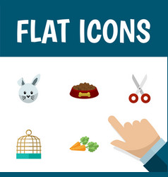 Flat icon pets set of root vegetable bunny bird vector