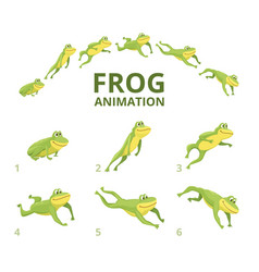 frog jumping animation various keyframes vector image
