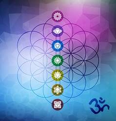 Sacred geometry flower life with chakra icons vector