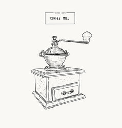 vintage coffee grinder hand drawn sketch vector image