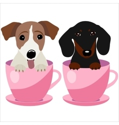 Jack Russell Terrier and Dachshund dog in pink vector image