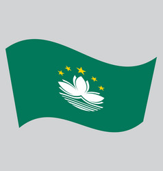flag of macau waving on gray background vector image