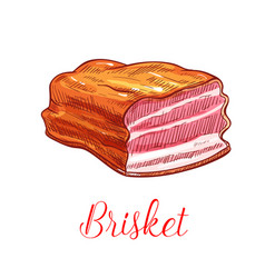 Brisket meat sketch isolated icon vector