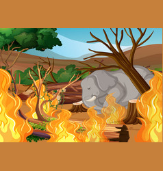 deforestation scene with elephant and wildfire vector image