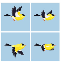Flying american goldfinch male animation sprite vector