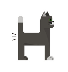 grey cat with green eyes vector image