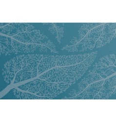 Leaves on the tree branches background vector image