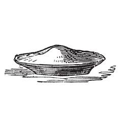 Pie vintage vector