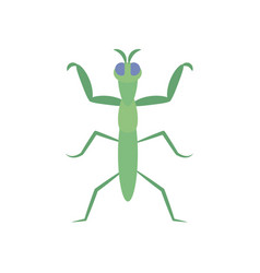 Praying mantis insect icon flat style vector