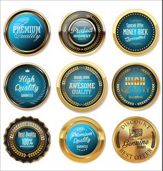quality gold and blue retro badge collection vector image